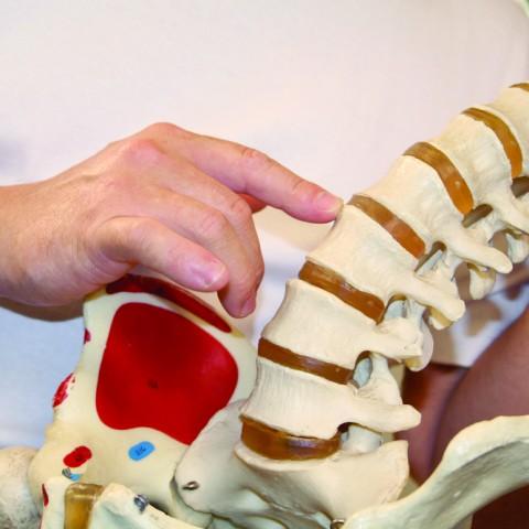 Spinal Adjustment